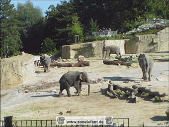 Elefantenpark Deutschland